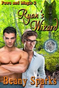Ryan's Wizard